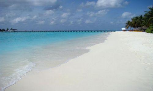 Zdjęcie MALEDIWY / Ari Atoll / Sun Island / Malediwy 18