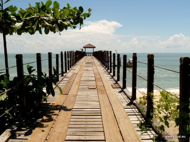 Zdjęcia: Park Narodowy, Penang 12, MALEZJA