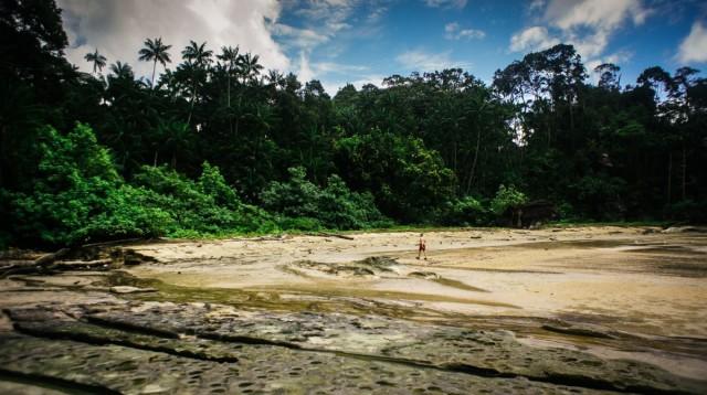 Zdjęcia: Bako, Borneo, Galeria testowa - wgrywanie zdjęc do artykułu. , MALEZJA