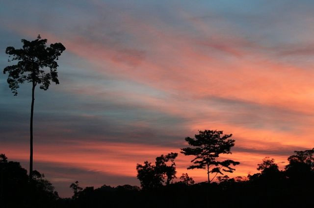 Zdjęcia: płw.malezyjski, Po drugiej stronie rzeki-Taman Negara, MALEZJA