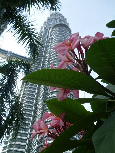 Zdjęcia: Kuala Lumpur, Kuala Lumpur, ... Petronas w bukiecie...., MALEZJA