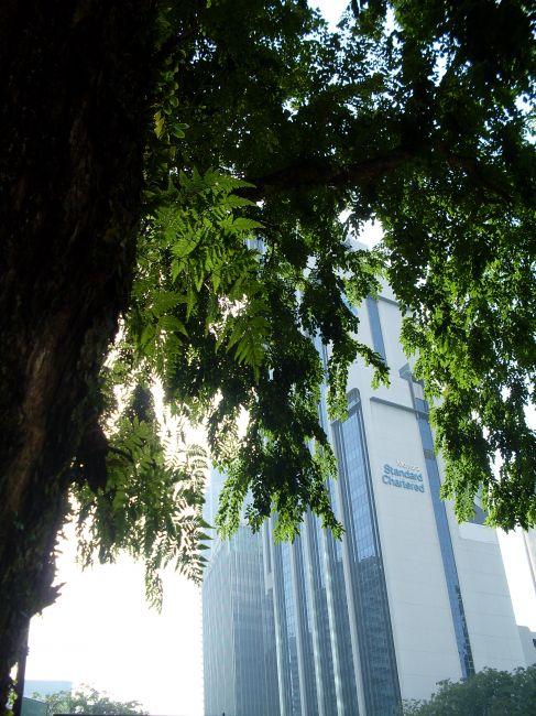 Zdjęcia: Kuala Lumpur, Kuala Lumpur, ... miejska dżungla ...., MALEZJA