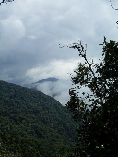 Zdjęcia: Cameron Highlands, Pahang, ... patrząc z góry..., MALEZJA