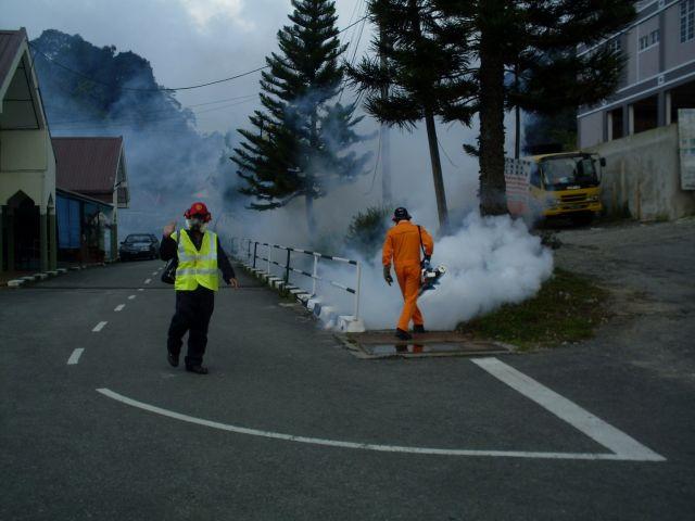 Zdjęcia: Cameron Highlands, Pahang, ... walka z komarami...., MALEZJA