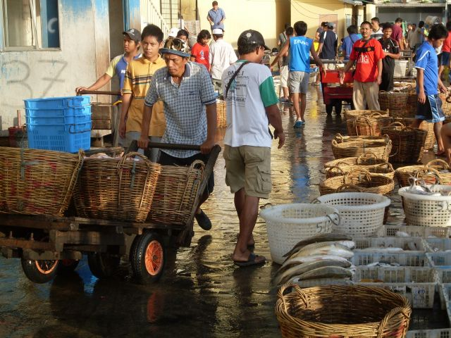 Zdjęcia: Borneo-Sandakan, Sabah, ... znikające owoce morza...., MALEZJA