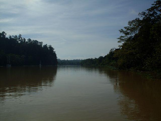 Zdjęcia: Borneo-Sukau-okilice, Sabah, ... duża woda ..., MALEZJA