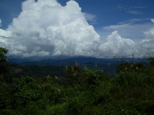 Zdjęcia: Borneo-Croker Range, Sabah, ... na granicy ..., MALEZJA