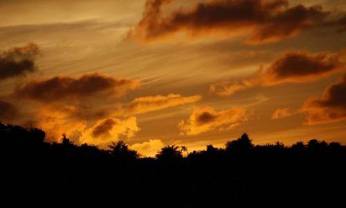 Zdjęcie MALEZJA / Borneo, Sabah / Kota Kinabalu, Karambunai / Zachód słońca w Karambunai