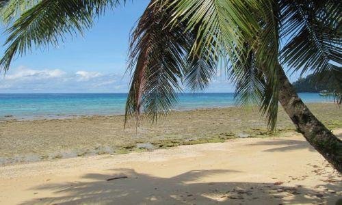Zdjęcie MALEZJA / Tioman / ABC / Plaża w ABC