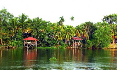 Zdjęcie MALEZJA / Borneo / Sarawak / Borneo