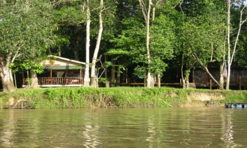 MALEZJA / Borneo / Kinabatangan River / Lodge