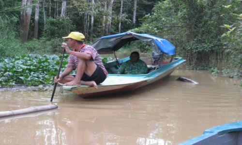 Zdjęcie MALEZJA / Borneo / Kinabatangan River / Spotkanie na rzece