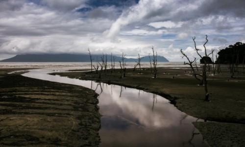 Zdjecie MALEZJA / Borneo / Bako / Galeria testowa