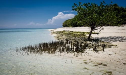 MALEZJA / Borneo / Borneo / Galeria zdjęć pod artykuł
