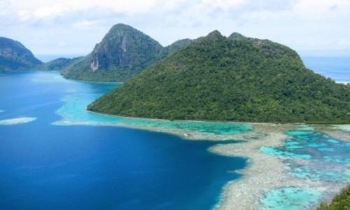 Zdjęcie MALEZJA / Borneo / Pulau Bodgaya / Borneo
