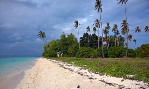 Zdjecie MALEZJA / - / Pulau Sibuan / Borneo, Sibuan