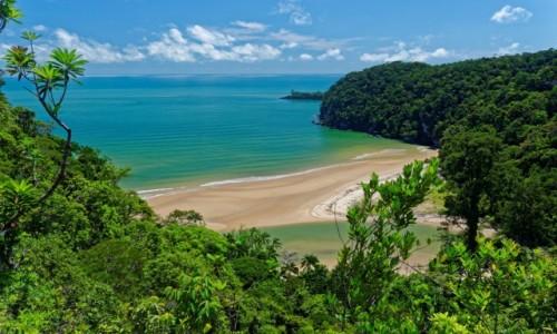 MALEZJA / Borneo / Bako National Park / Dzika plaża