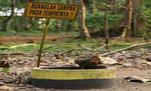 Zdjecie MALEZJA / Malezja / Malezja / Zanim przyjedzie PKS