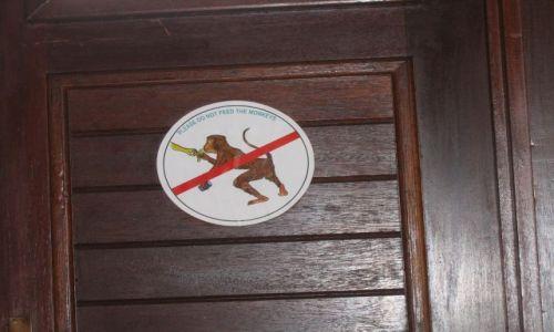 Zdjęcie MALEZJA / brak / malezja / nie dokarmiać małp!