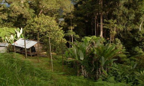 Zdjęcie MALEZJA / Pahang / Cameron Highlands / ... wioska zagubiona w górach...
