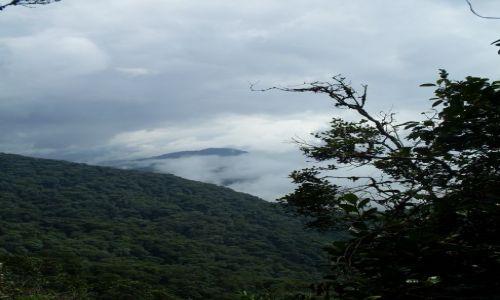 Zdjęcie MALEZJA / Pahang / Cameron Highlands / ... patrząc z góry...