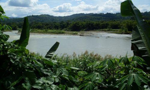 Zdjęcie MALEZJA / Sabah / Borneo- droga KK-Sandakan / ... rzeki Borneo...