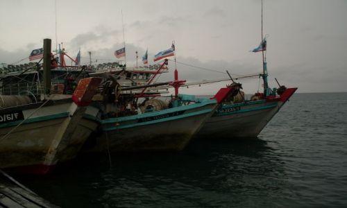 Zdjęcie MALEZJA / Sabah / Borneo-Kunak / ... trójka?...