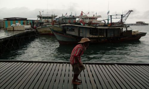 Zdjęcie MALEZJA / Sabah / Borneo-Kunak / ... nosiciel kokosów ...