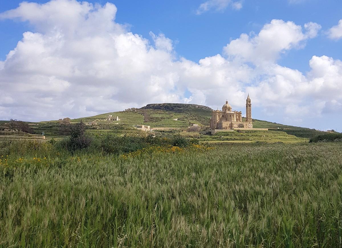 Zdjęcia: Bazylika  Ta'Pinu, Gozo, Pośród łanów zbóż, MALTA
