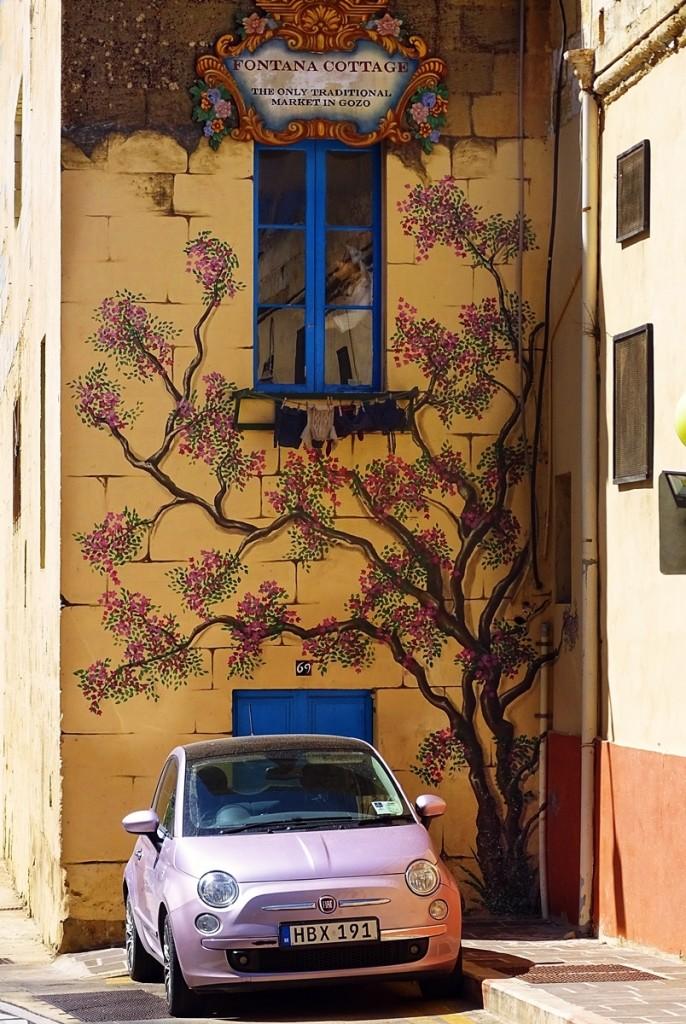 Zdjęcia: ..., Gozo, Fontana Cottage, MALTA