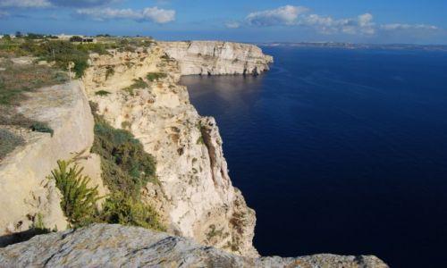 Zdjecie MALTA / Gozo / Ta'Cenc / na klifach