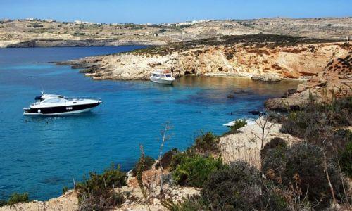 Zdjecie MALTA / Comino /   / Blue Lagoon