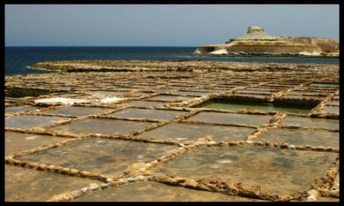 Zdjecie MALTA / brak / okolice m. Marsalforn - wyspa Gozo / Plantacja soli