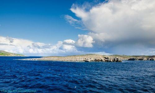 MALTA / Malta / Malta/Gozo / Widok z promu na okolice Comino