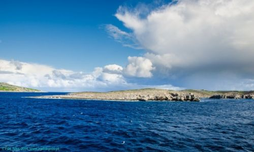 Zdjecie MALTA / Malta / Malta/Gozo / Widok z promu na okolice Comino