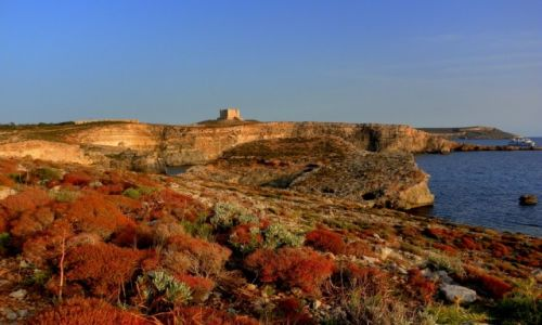 Zdjecie MALTA / Wyspa Comino / Comino Blue Lagoon / Konkurs - Comino w blasku zachodzącego słońca