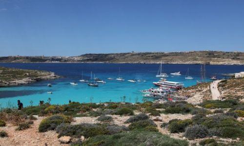 Zdjęcie MALTA / Wyspa Comino / Błękitna laguna / Bajkowa zatoczka