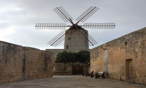 Zdjęcie MALTA / Malta  srodkowa / Żurrieq / Wiatrak Xarolla