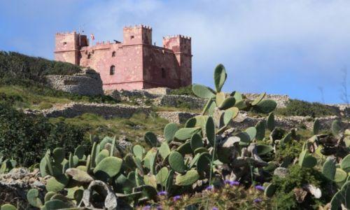 Zdjecie MALTA / Melieha / w drodze do Cirkewwa / Wieża św Agaty, czyli Czerwona Wieża