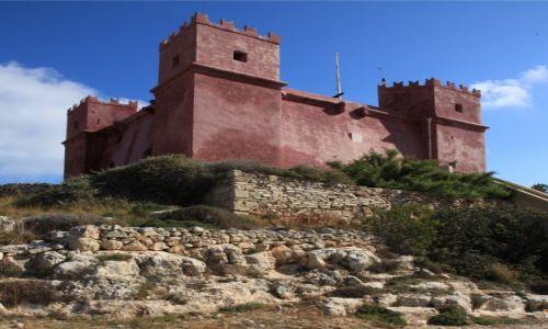 Zdjęcie MALTA / Melieha / Czerwona wieża / Na wzgórzu
