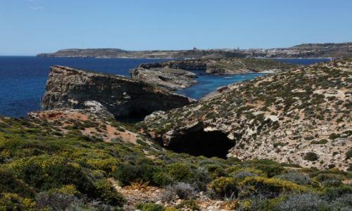 MALTA / Morze Śródziemne / Wyspa Comino / Skały wśród błękitu