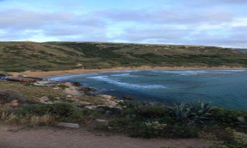 Zdjęcie MALTA / Mellieha / Golden Bay / Cicha zatoczka