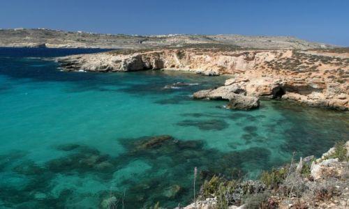 Zdjecie MALTA / Comino / Wyspa Comino / Blue Lagoon