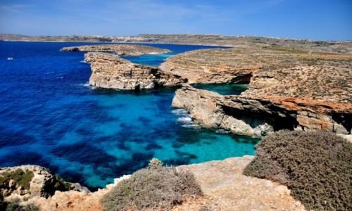 Zdjecie MALTA / comino / blue lagoon / blue lagoon