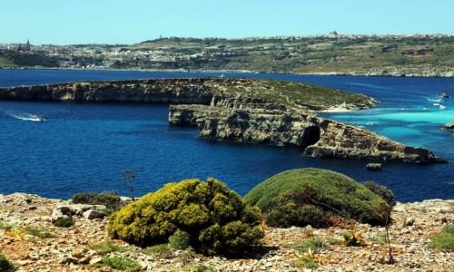 Zdjęcie MALTA / Comino / Błękitna laguna / Pomiędzy wyspami