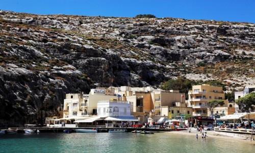 Zdjęcie MALTA / Gozo / Xlendi  / Na zboczu