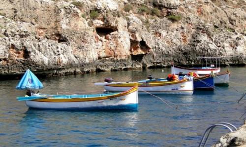 Zdjecie MALTA /   /   / Maltańskie wspomnienie (8)