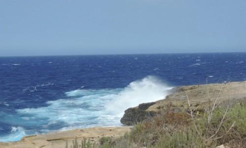 Zdjecie MALTA / Gozo / Gozo, Malta / Wietrznie na Malcie