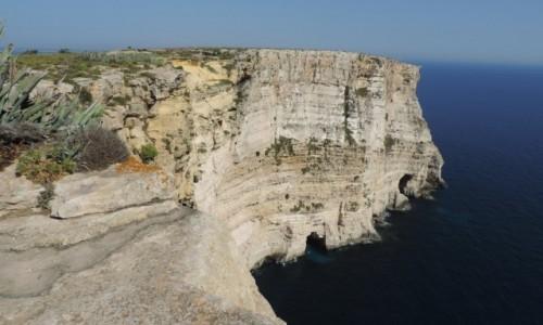 Zdjecie MALTA / Gozo / Ta Cenc / Klify Ta Cenc