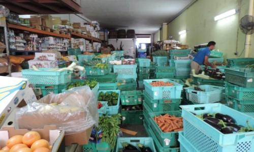 Zdjecie MALTA / Gozo / Fontana / Warzywniak na Gozo